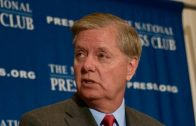 Just-go-ahead-and-confess-Lindsey-Graham-US-NEWS