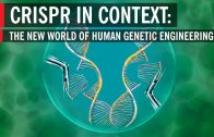 CRISPR-in-Context-The-New-World-of-Human-Genetic-Engineering