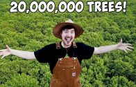 Planting-20000000-Trees-My-Biggest-Project-Ever